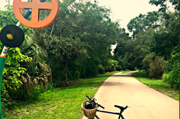 Beers of the Northern Pinellas Trail – Tarpon Springs and Palm Harbor
