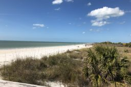 Florida State Parks: #1 Honeymoon Island State Park