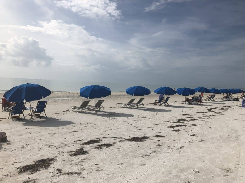 Beach umbrellas on Honeymoon Island