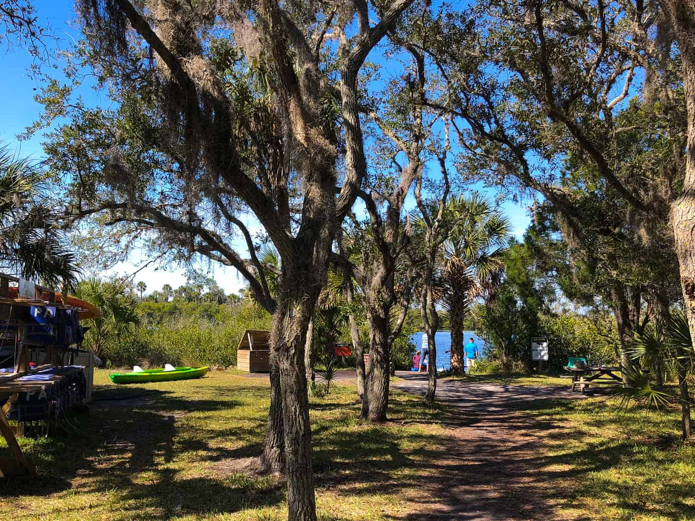 Path as you approach the paddling launch at Werner-Boyce Salt Springs State Park in Port Richey, FL #Florida #FL FLStateParks #CornacopiaInThePark #kayaking #kayak #travel