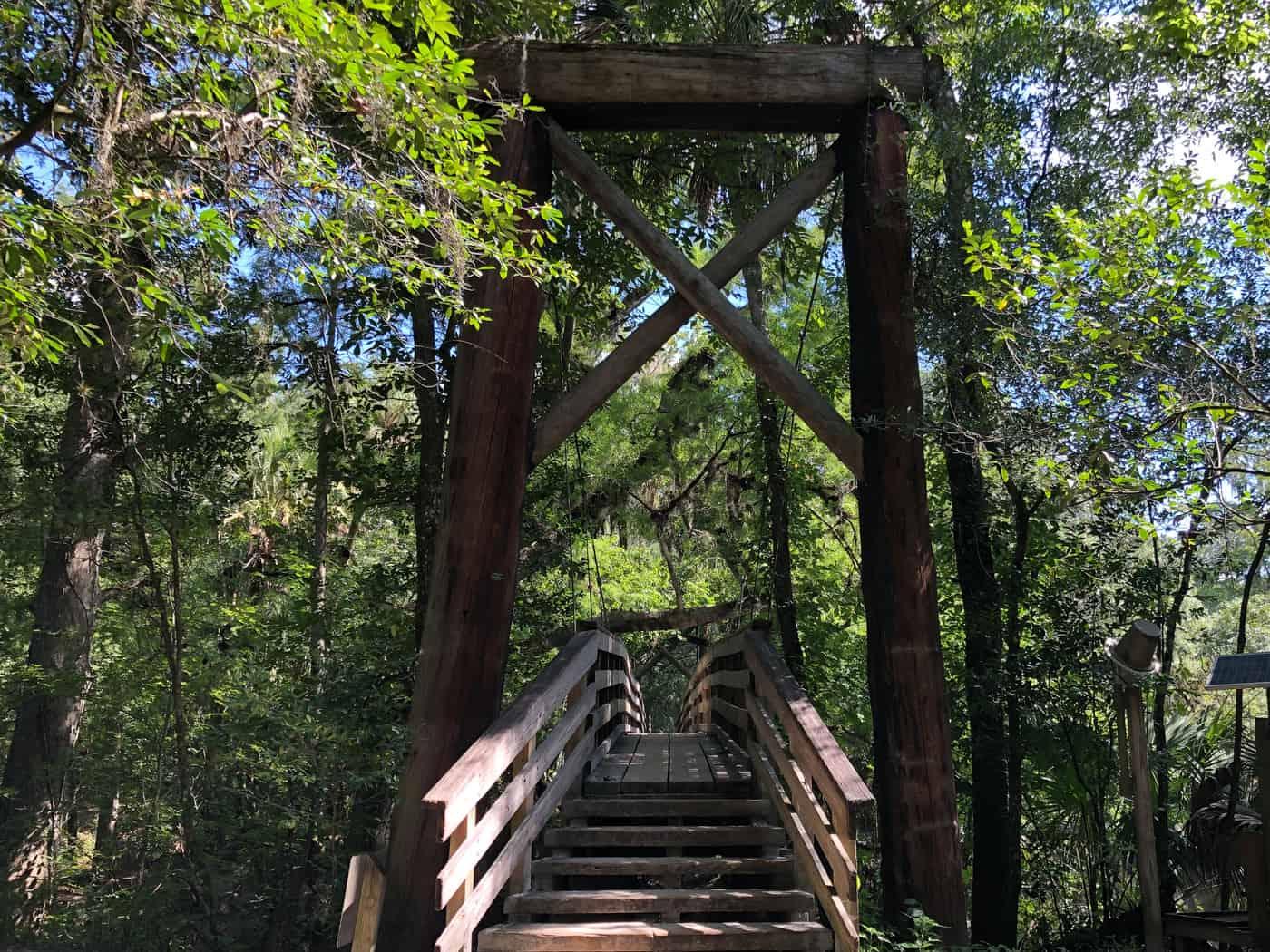 Suspension Bridge at Hillsborough River State Park